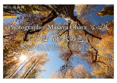 Dm201010_web