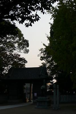 20101114p1010964